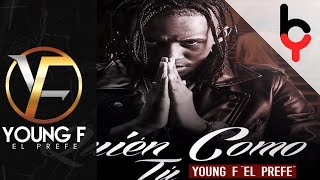 Young F - Quien Como Tu | Audio