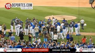 Chicago Cubs National League Central Division Champs