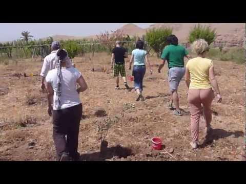 1001 Adventure Tours | Travel Blog – Travel Minute | Planting a Tree | Olivenbäume Marokko