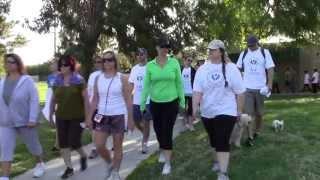 Lean on Me Walk 2013 Highlights