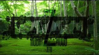 ZETU -Sam to ogarnę (Robin Hood Mixtape)