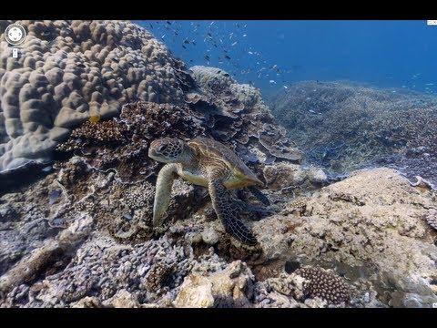 Underwater Earth