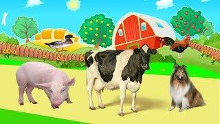 Dierengeluiden Voor Peuters Video 3D | dieren filmpjes boerderij ,dieren filmpjes jungle,wilde