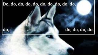 Hungry like the wolf lyrics