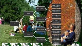 Family Tree Music Video (Sample)