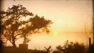 wūsh - trees