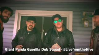 Giant Panda Guerrilla Dub Squad - Live from the Hive