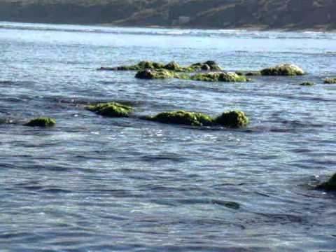 alger, jean bart, une mer calme.wmv