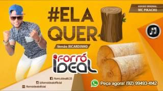 ELA QUER - FORRO IDEAL (MUSICA NOVA) 2015
