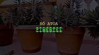 Só atoa- Pemental feat C4 Pedro