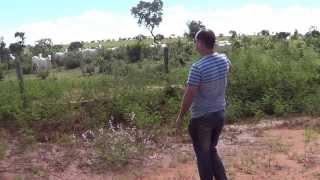 WILLIAN GIRASSOL NA FAZENDA NO MEIO DA BOIADA  (12)