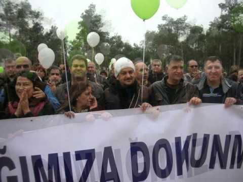 """""""Çamlığıma dokunma"""" Celine Dion-The Power Of Love- Mehmet Yılmaz"""