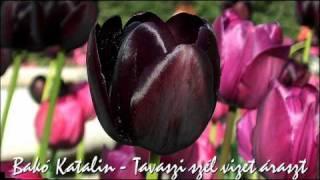 Tavaszi szél vizet áraszt... (Mezőkeszü) - Bakó Katalin