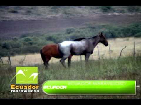 Ecuador Maravilloso