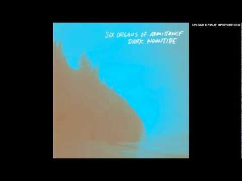 six-organs-of-admittance-a-thousand-birds-haecceityandquiddity