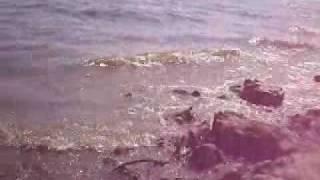 Wakacje z gliniarzem. Dzika plaża - Przystań Brzydula