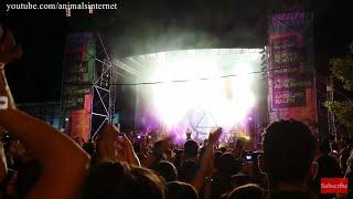 Boys band D.A.M.A. enche avenida e tira selfies com fãs fervorosas em Vila Real, Portugal