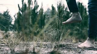 Trailer Clipe Só Quem Tem Raiz - Sarah Farias - CMV Films