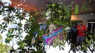 Timothy Brownie Live at Armada Fania