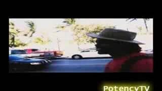 Qualo Columbian Prince - Potency Tv