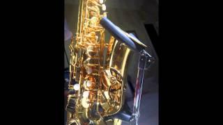 Celine Dion - Tous les secrets - (Saxophone Cover)