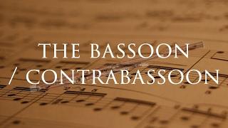 Instrument Series: The Bassoon  & Contrabassoon