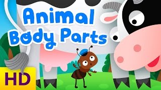 Learn animal body parts | Funny animated cartoon for kids