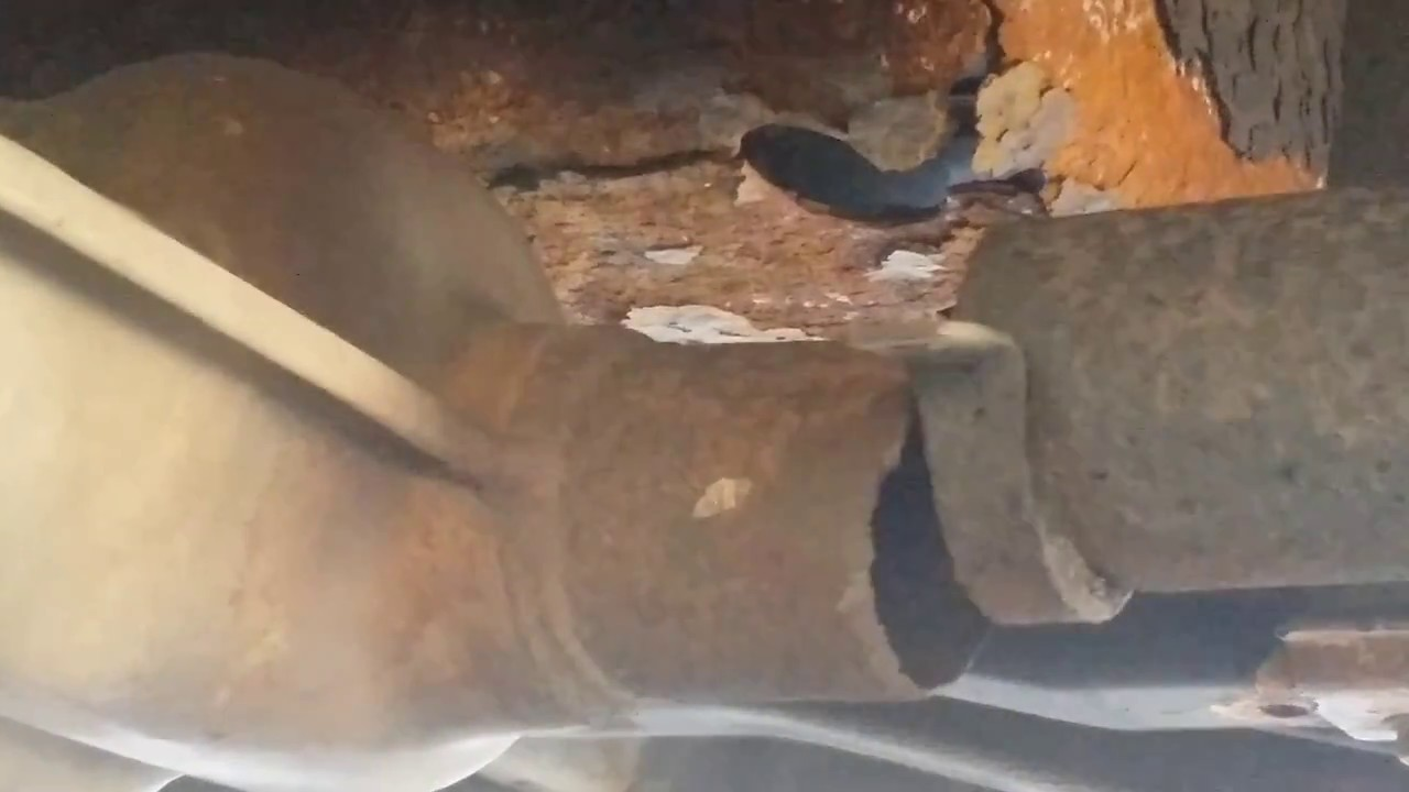 Burst Pipe Replacement Pleasant Valley Mobile Home Park CA