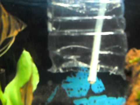bitkili akvaryumlar için el yapımı co2 çözücü (reaktör)