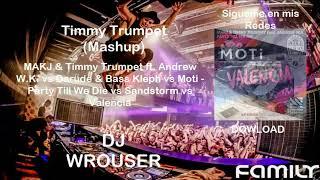 Party Till We Die vs Sandstorm vs Valencia (Timmy Trumpet Mashup)