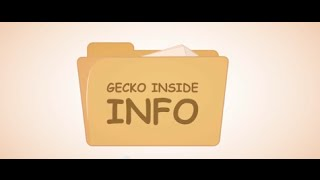Gecko Hospitality Career Video