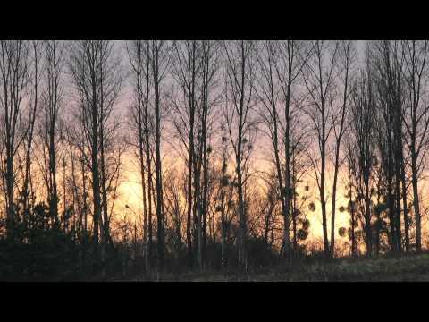 frederic-chopin-prelude-in-c-minor-op-28-no-20-tomasz-trzcinski
