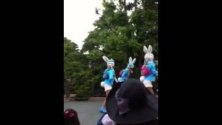 Bunny land floats