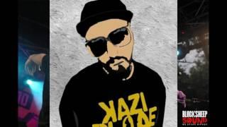 Kazi Ploae si Specii - Maimute de strada (Remix)