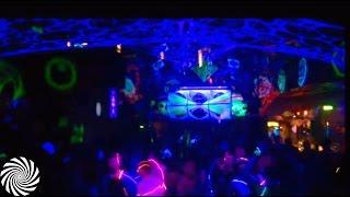 Vini Vici - The Tribe Live @ Zero Club, Germany