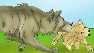 Cartoon Stories New | Cartoon Kahani New | Hindi Kahaniya|Cartoon Moral Story | Kekda or Bedhya 2019