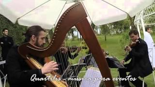 É isso aí - Ana Carolina (Quartilis - Quinteto com harpa)