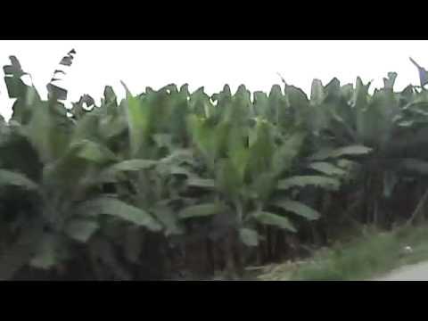 Armenakia 049 – Peru to Ecuador