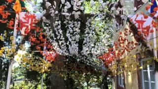Javier Rodrigues - Viva a nossa Tradição (Letra e Musica: Sidónio Silva)