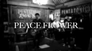 Peace Flower - ในเมื่อคนจะไป (Live Session)