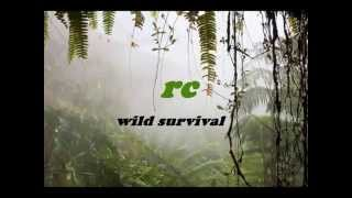RC - Wild Survival ( Original Mix )