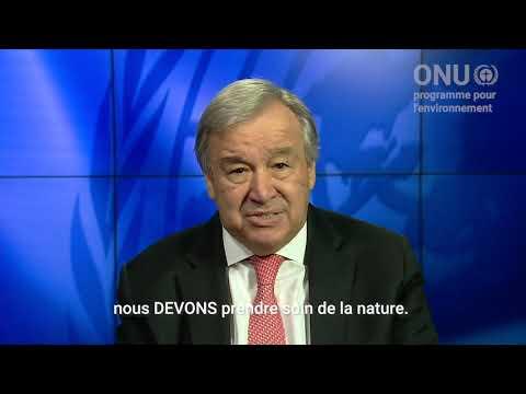 Video : Guterres : «Pour protéger l'humanité, il faut prendre soin de la nature»