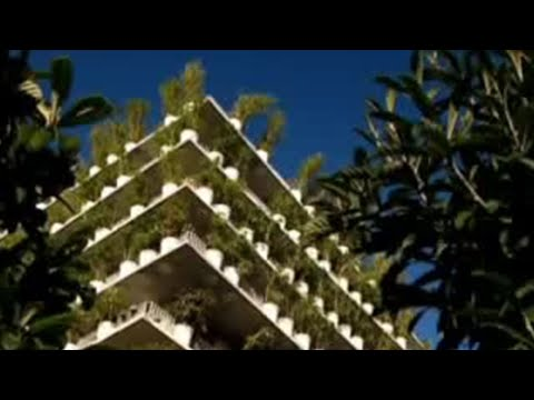 Disasters – Combatting global warming – BBC