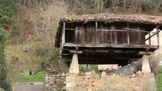 Casa rural El Navarón y El Sueve