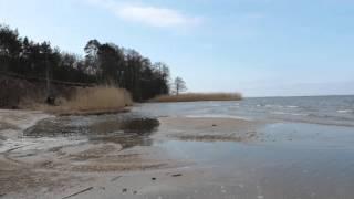 Dzika plaża 1