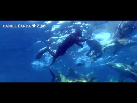 daniel-landa-lagu-oficialni-full-hd-videoklip-daniel-landa-zito