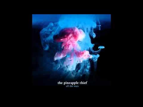 the-pineapple-thief-02-warm-seas-fabio-raineri
