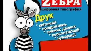 zebra kvit