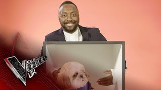 What's in the Box? With will.i.am | The Voice UK 2019