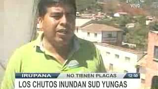 LOS CHUTOS INUNDAN EN SUD YUNGAS@REDPATLPZ